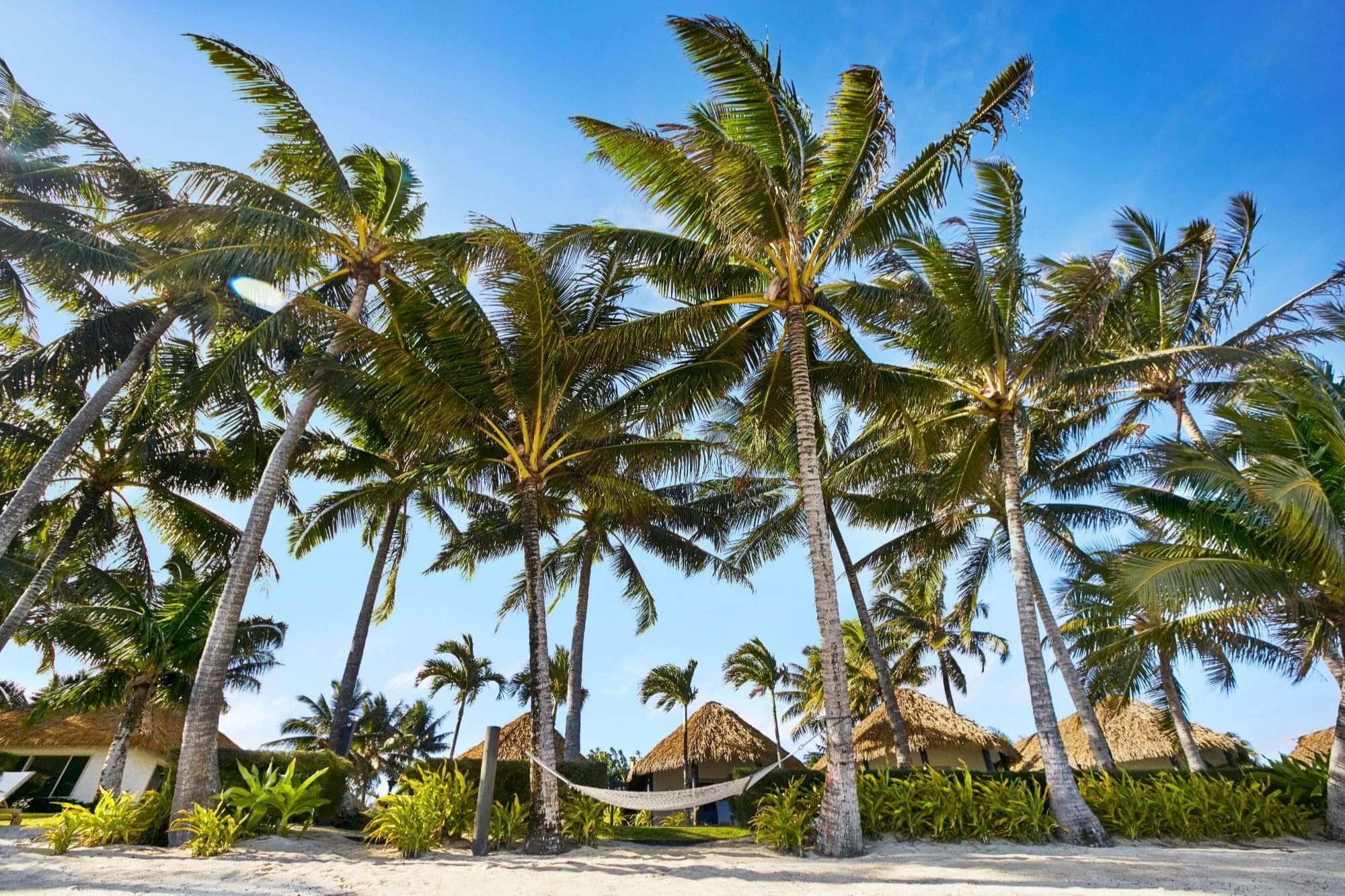 Beach front villa suites in Rarotonga
